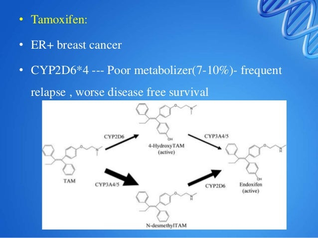 Targets and receptors Angiotensin-converting enzyme (ACE) ACE inhibitors (e.g., enalapril) Renoprotective effects, hypoten...