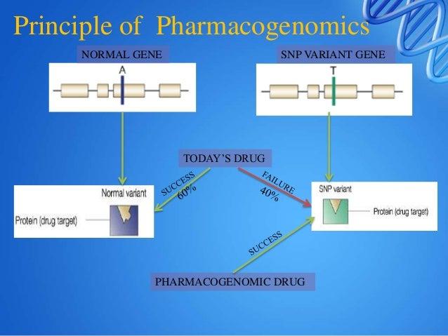 NORMAL GENE SNP VARIANT GENE TODAY'S DRUG PHARMACOGENOMIC DRUG Principle of Pharmacogenomics