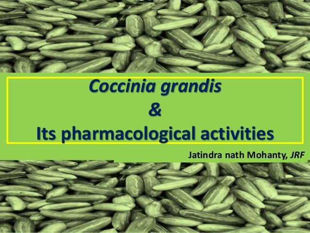 Coccinia grandis & Its pharmacological activities Jatindra nath Mohanty, JRF