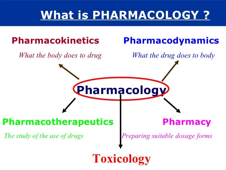 pharmacodynamic phase