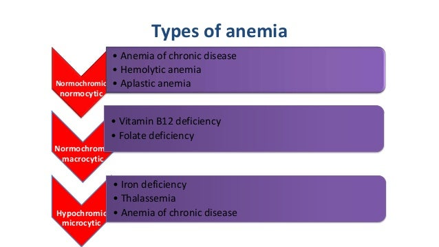 what is anemia types of anemia iron essay The most common cause of anemia is low levels of iron in the body this type of anemia is called iron-deficiency anemia your body needs iron to make hemoglobin without the needed amount of iron, your body cannot make hemoglobin.