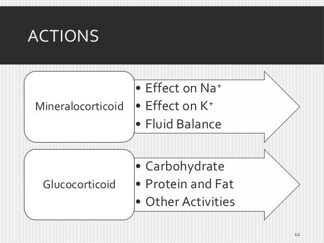 ACTIONS • Effect on Na+ Mineralocorticoid • Effect on K+ • Fluid Balance  Glucocorticoid  • Carbohydrate • Protein and Fat...