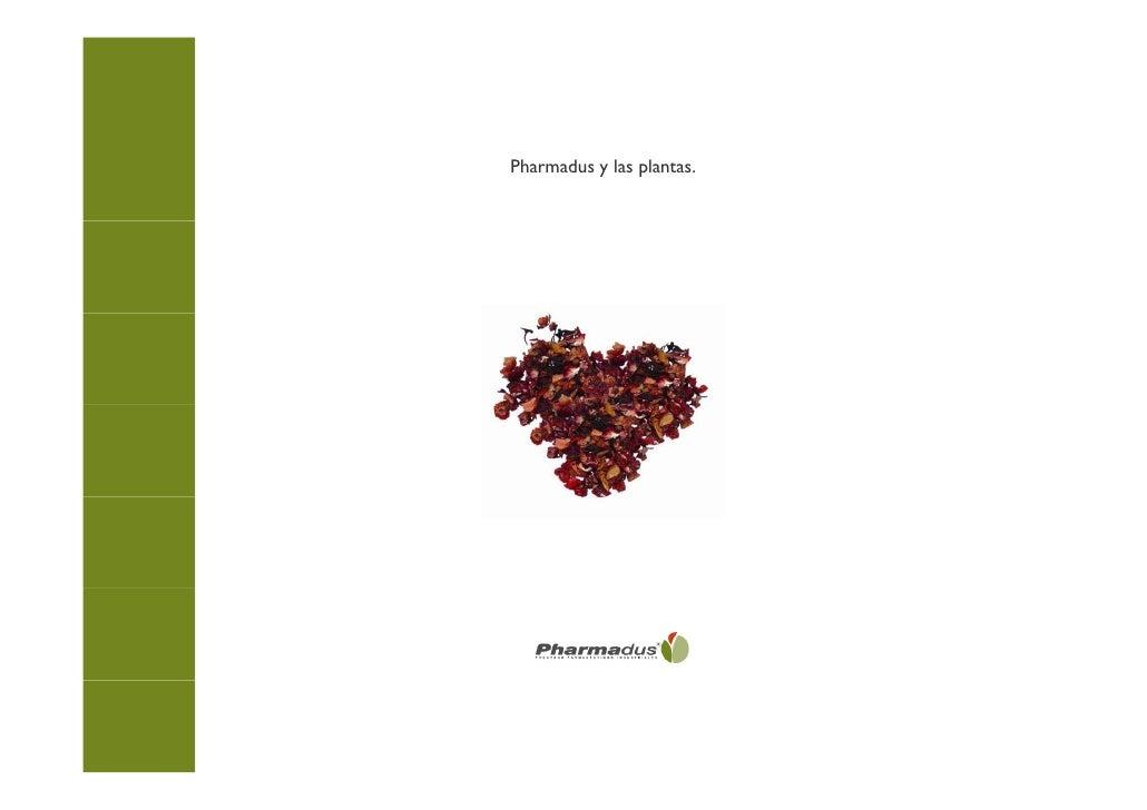 Pharmadus y las plantas.