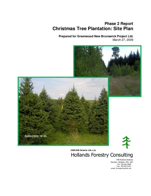 Phase 2 Report  Christmas Tree Plantation: Site Plan Prepared for Greenwood New Brunswick Project Ltd. March 27, 2009  209...
