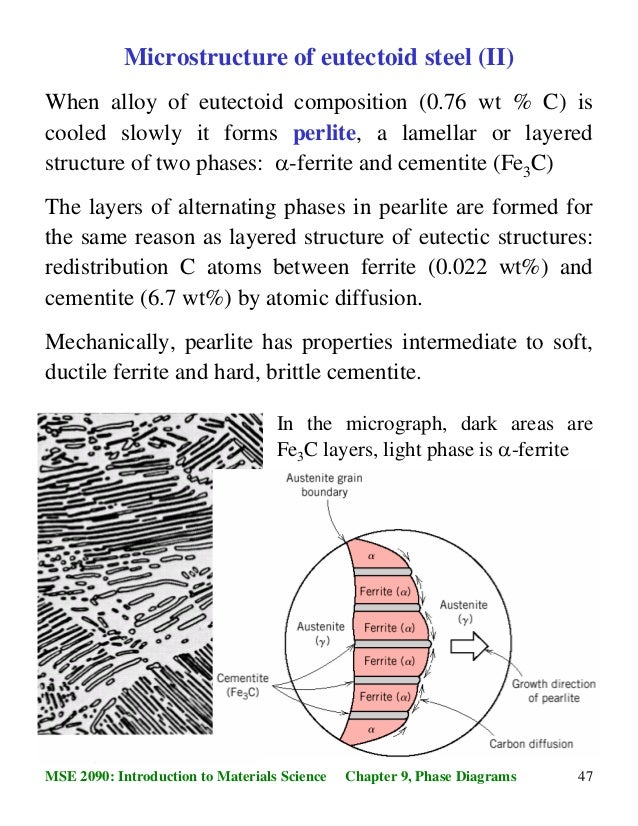 microstructure of eutectoid steel (i)