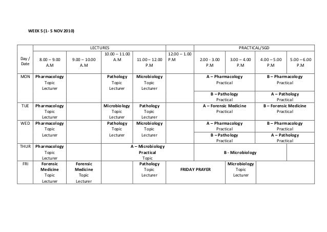 WEEK 5 (1- 5 NOV 2010) Day / Date LECTURES PRACTICAL/SGD 8.00 – 9.00 A.M 9.00 – 10.00 A.M 10.00 – 11.00 A.M 11.00 – 12.00 ...