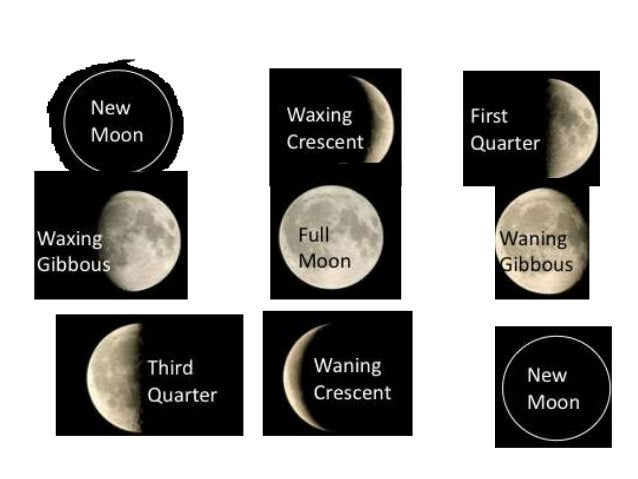 The phases of the Moon are: