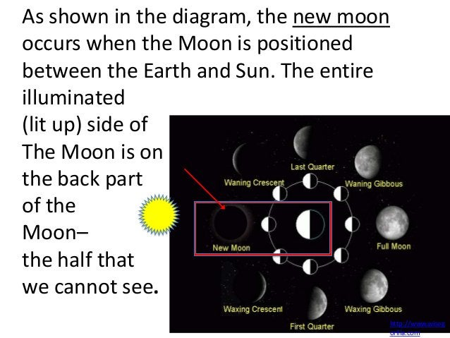 As shown in the diagram, the new moonoccurs when the Moon is positionedbetween the Earth and Sun. The entireilluminated(li...