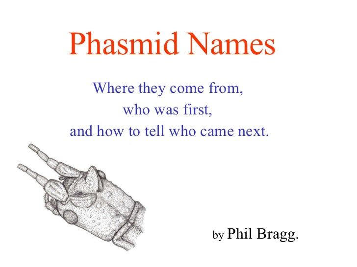 Phasmid Names   Where they come from,  who was first,  and how to tell who came next. by  Phil Bragg.