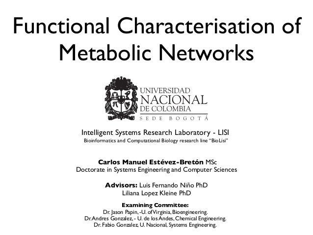 Functional Characterisation ofMetabolic NetworksCarlos Manuel Estévez-Bretón MScDoctorate in Systems Engineering and Compu...