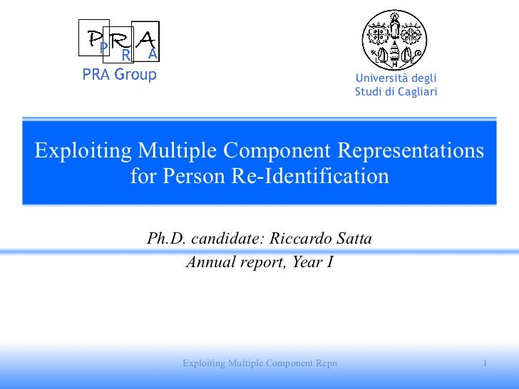 Exploiting Multiple Component Representations for Person Re-Identification Ph.D. candidate: Riccardo Satta Annual report, ...