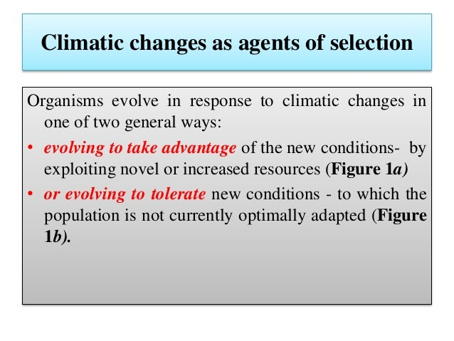 the impact of adaptation and food variability in the evolution of mankind 3 unfccc climate change: impacts, vulnerabilities and adaptation in developing countries i introduction 5 ii climate change and adaptation 8 21 the need for.