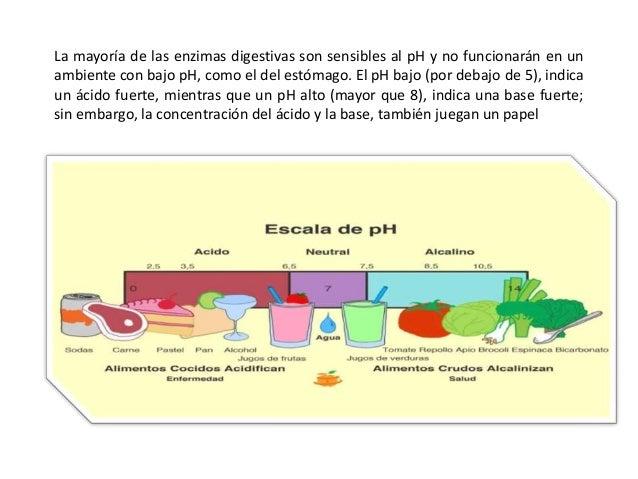 Ph en la digestion Slide 3