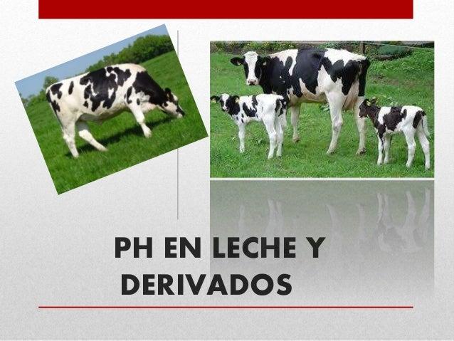 PH EN LECHE Y DERIVADOS