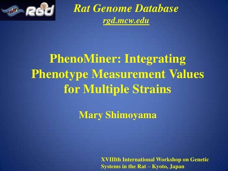Rat Genome Database rgd.mcw.edu PhenoMiner: Integrating Phenotype Measurement Values for Multiple Strains Mary Shimoyama X...
