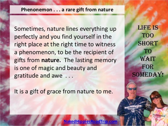 Phenonemon . . . a rare gift from natureSometimes, nature lines everything up           Life isperfectly and you find your...