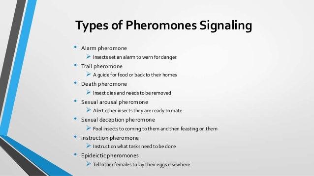 Pheromones in humans sexually