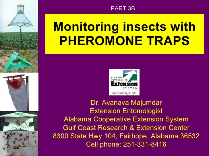 Monitoring insects with PHEROMONE TRAPS Dr. Ayanava Majumdar Extension Entomologist Alabama Cooperative Extension System G...