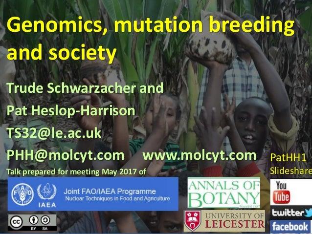 Genomics, mutation breeding and society Trude Schwarzacher and Pat Heslop-Harrison TS32@le.ac.uk PHH@molcyt.com www.molcyt...