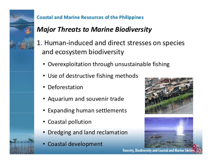 threats to philippine biodiversity 13 impacts of invasive species on ecosystem services heather charles and jeffrey s dukes and services that in turn maintain the production of goods and biodiversity, and directly or indirectly benefit humans (daily threats to human society that are proportional to the value of the.