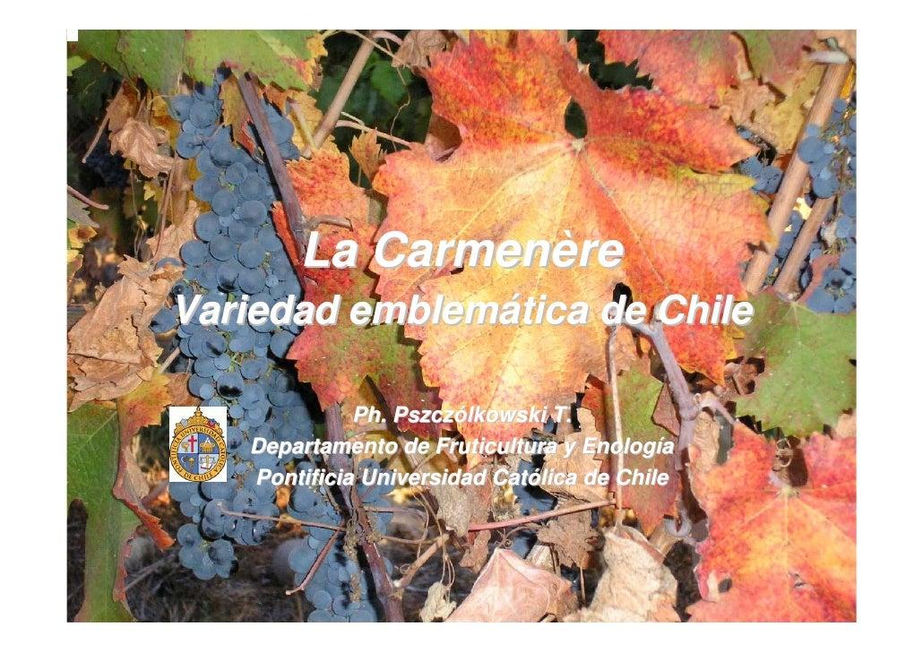 La Carmenère Variedad emblemática de Chile               Ph. Pszczólkowski T.    Departamento de Fruticultura y Enología  ...