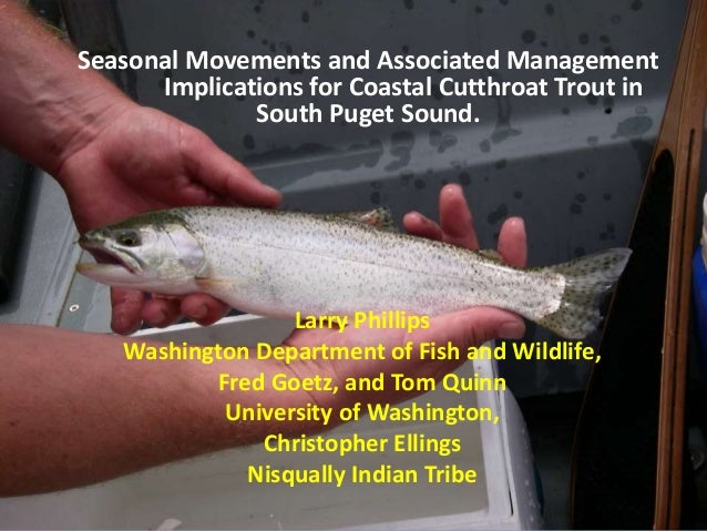 Seasonal Movements and Associated Management Implications for Coastal Cutthroat Trout in South Puget Sound. Larry Phillips...