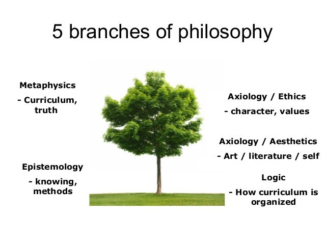 5 major branches of philosophy