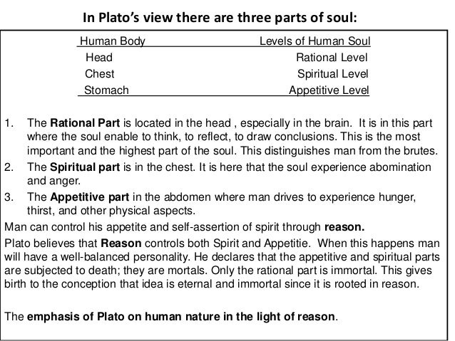 the human function in plato and Plato's three parts of the there are so many of these appetites that plato does not bother to (with his emphasis on how the drive for power shapes human.