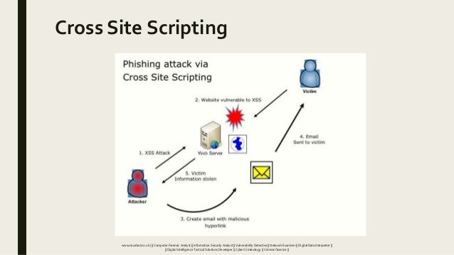 Cross Site Scripting www.naushad.co.uk      Computer Forensic Analyst    Information Security Analyst    Vulnerability Det...