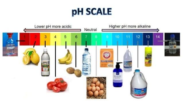 Free Worksheets balance the scales worksheet : pH