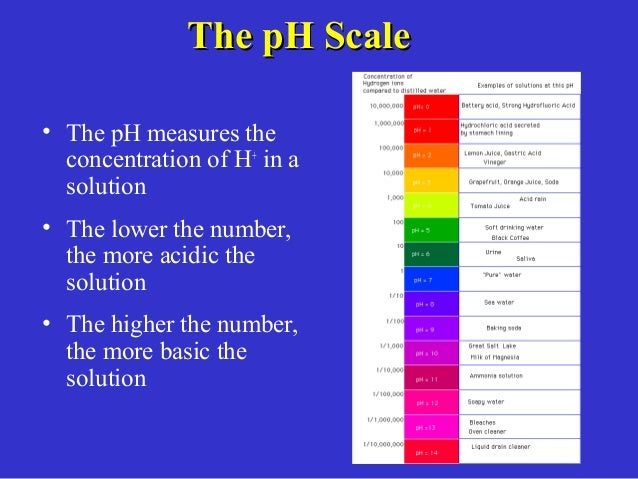 determination of ph using ph paper You've just watched jove's introduction to using a ph meter you should now understand what ph is spectrophotometric determination of an equilibrium constant.