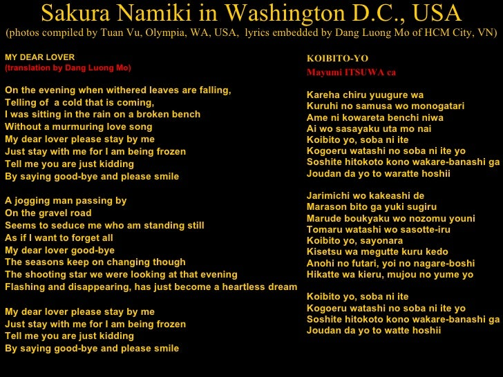 Sakura Namiki in Washington D.C., USA (photos compiled by Tuan Vu, Olympia, WA, USA,  lyrics embedded by Dang Luong Mo of ...