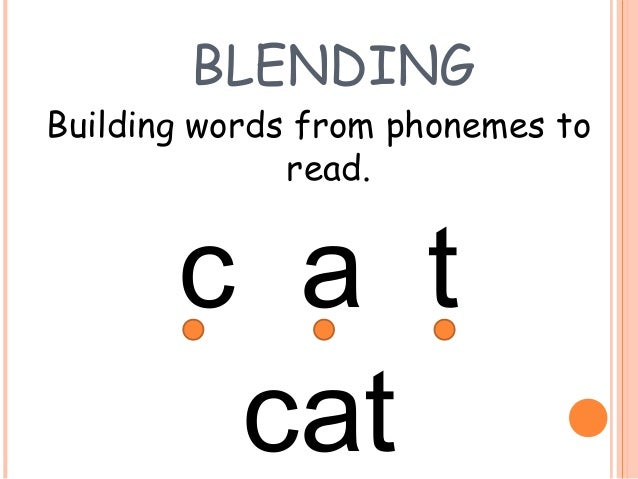 Cat Can T Spell