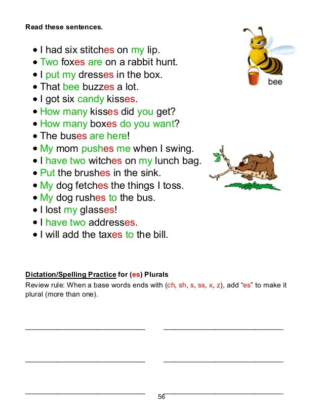 Phonic Sentences - descargardropbox