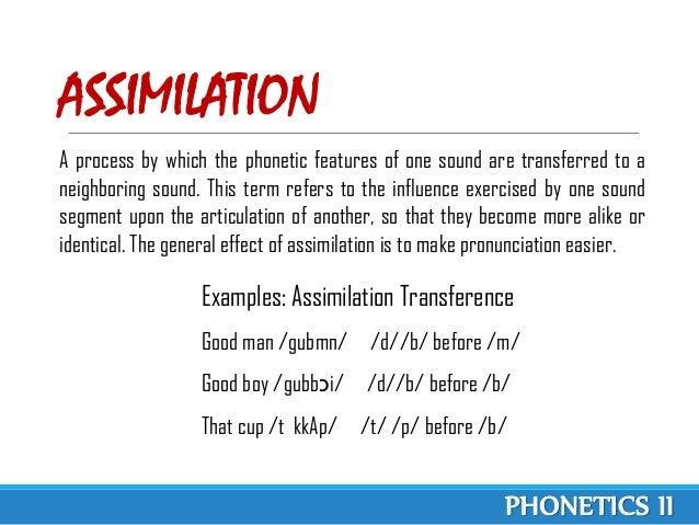 Define Metathesis Linguistics Term Paper Academic Writing Service