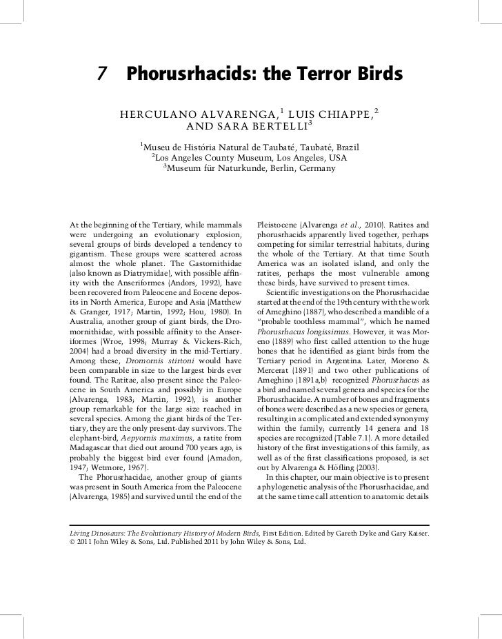 7 Phorusrhacids: the Terror Birds               HERCULANO ALVARENGA, 1 LUIS CHIAPPE, 2                       AND SARA BERT...