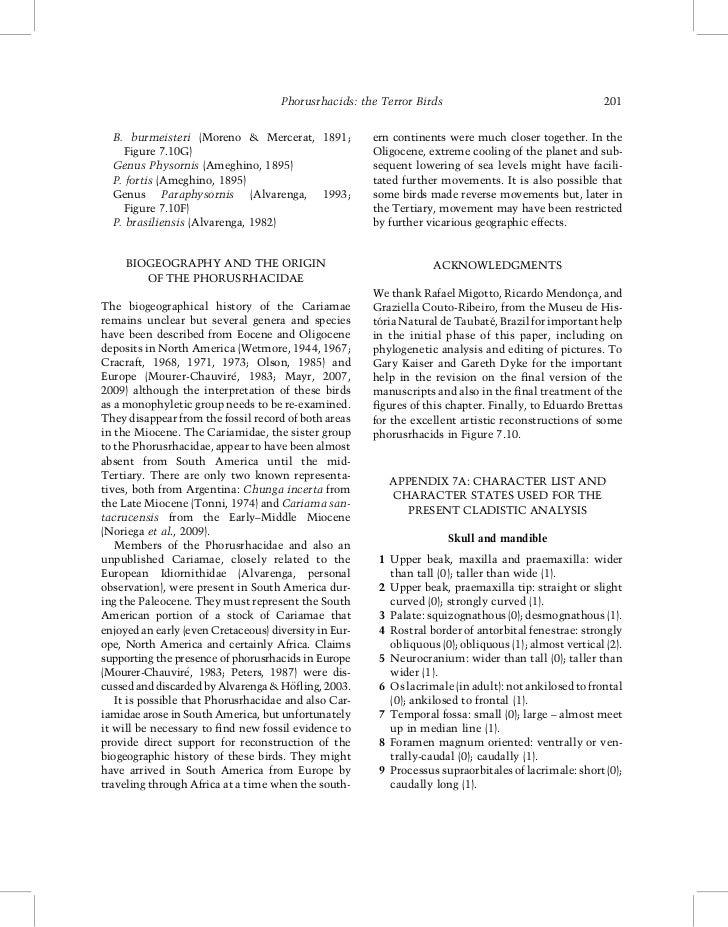 Phorusrhacids: the Terror Birds                                    201  B. burmeisteri (Moreno  Mercerat, 1891;           ...