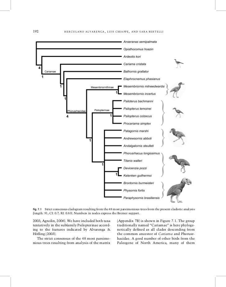 192                   HERCULANO ALVARENGA, LUIS CHIAPPE, AND SARA BERTELLIFig. 7.1 Strict consensus cladogram resulting fr...