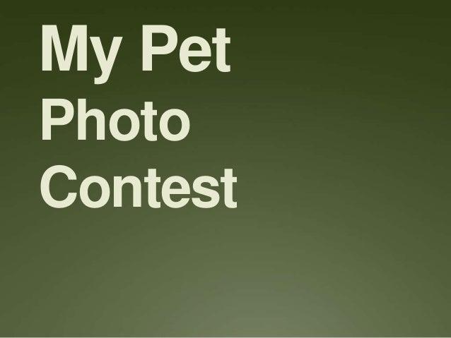 My Pet Photo Contest
