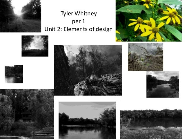 Tyler Whitney per 1 Unit 2: Elements of design
