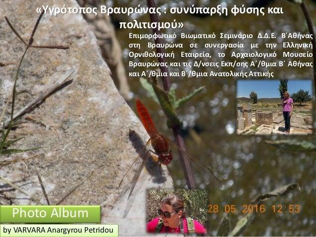 Photo Album by VARVARA Anargyrou Petridou «Υγρότοπος Βραυρώνας : συνύπαρξη φύσης και πολιτισμού» Επιμορφωτικό Βιωματικό Σε...
