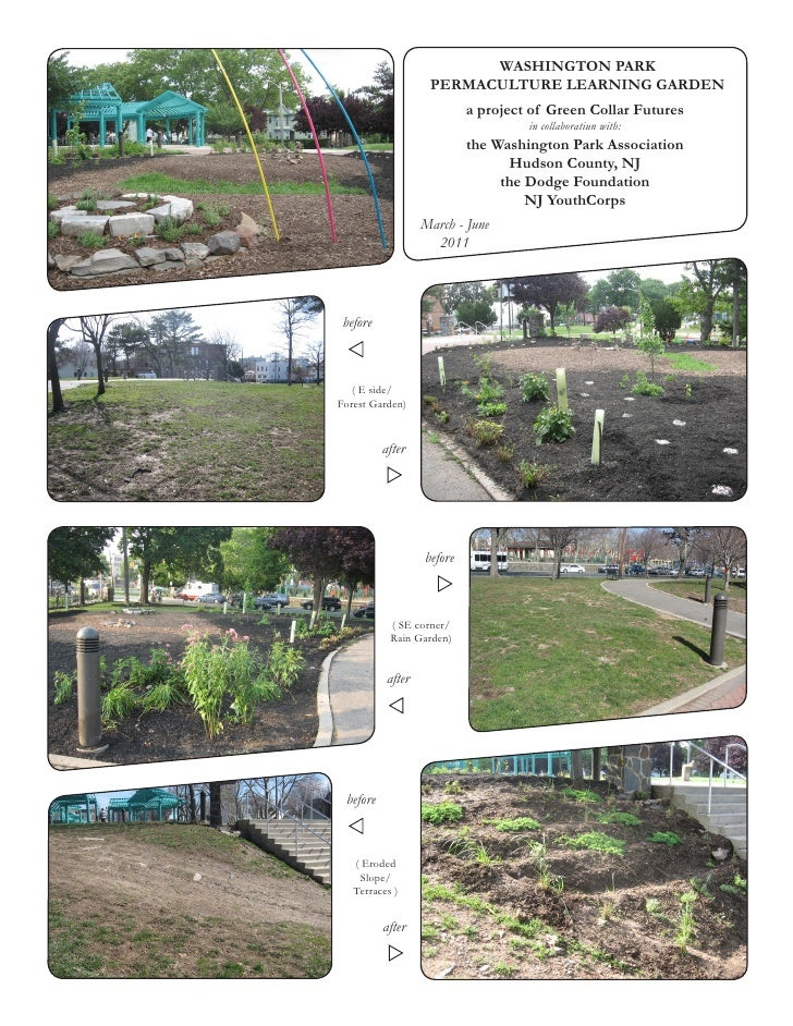 WASHINGTON PARK                    PERMACULTURE LEARNING GARDEN                            a project of Green Collar Futur...