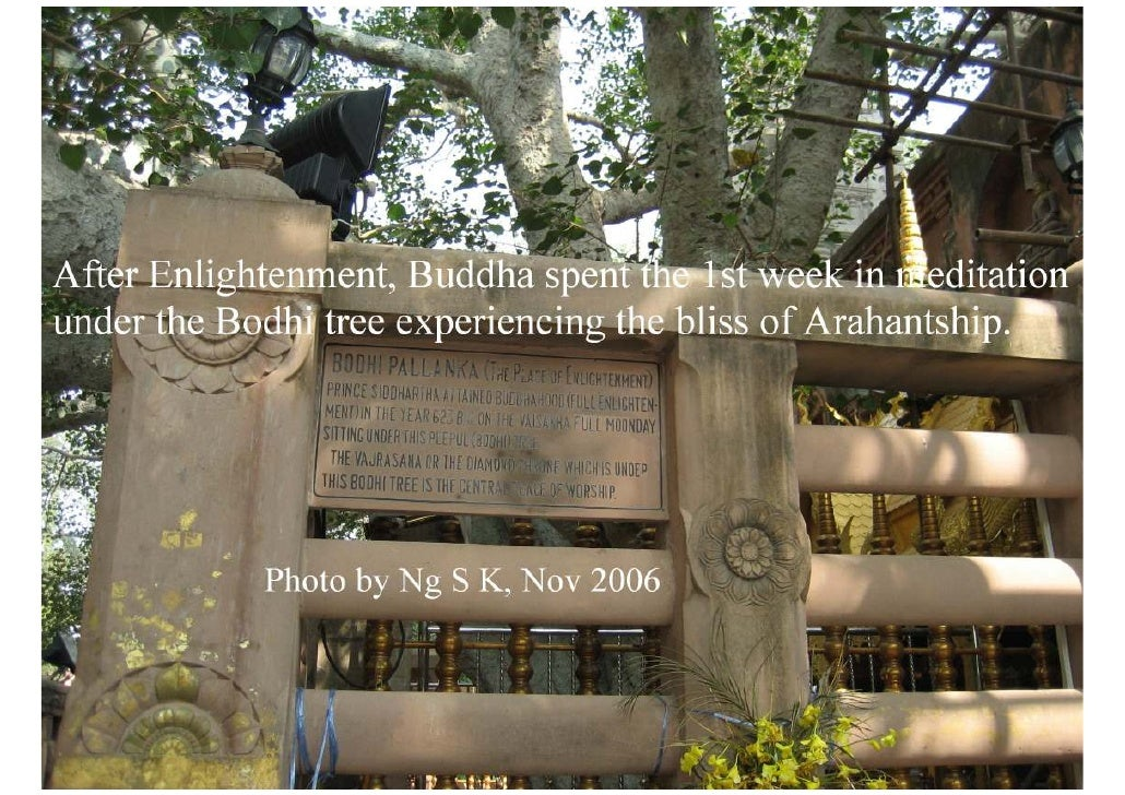 buddhist pilgrimage essay 2011 studies of religion hsc examination 'sample answers'  – undertook pilgrimages to buddhist holy  2011 studies of religion hsc examination 'sample.