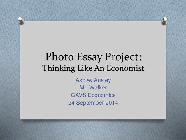 essay project