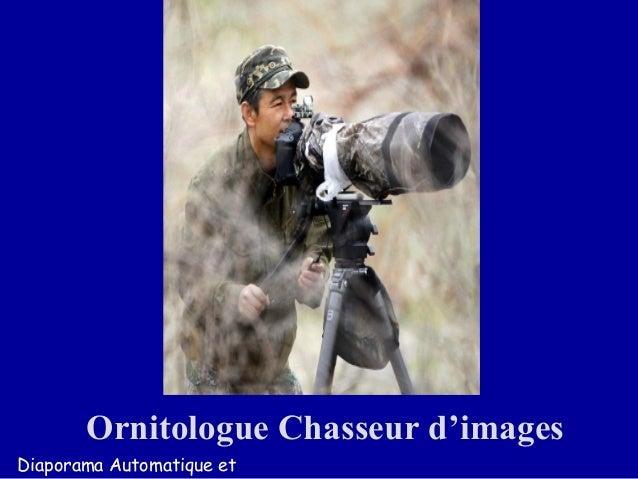 Ornitologue Chasseur d'images Diaporama Automatique et