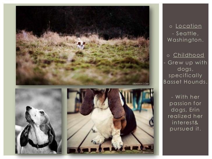 Photographer presentation  Slide 3