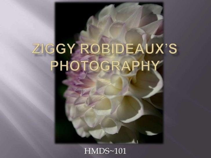 ZiggyRobideaux'sPhotography <br />HMDS~101<br />