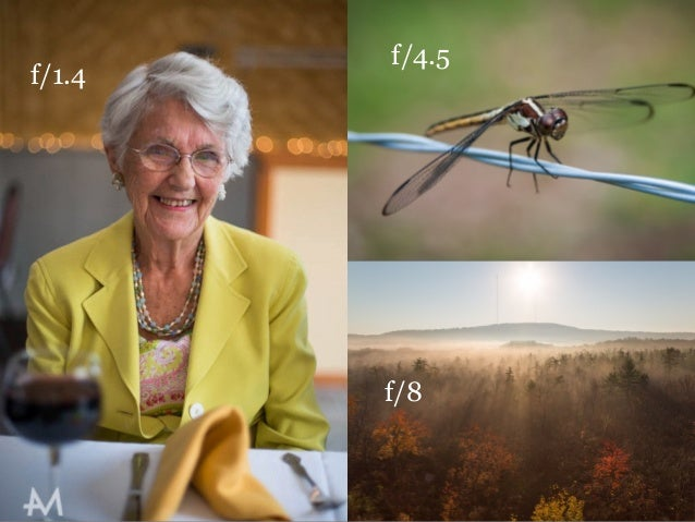 f/1.4 f/4.5 f/8