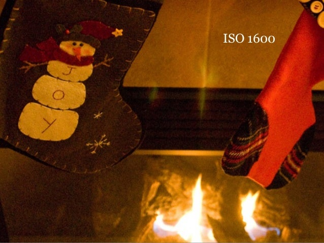 ISO 1600