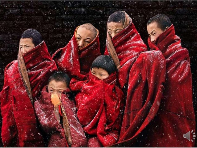 Photography By Chan Kwok Hung (National Geographic Winner)
